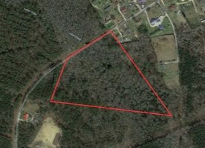 REDUCED!! 16.55 Acres of Timber and Hunting Land For Sale in Bladen County NC!