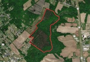 REDUCED!! 102 acres Hunting and Timber Land for Sale in Beaufort County NC!