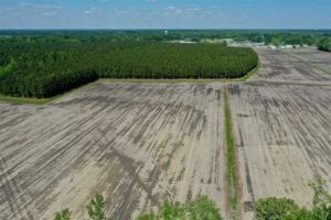 25.5 acre Homesite for Sale in Craven County NC!