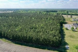 19 acre Homesite for Sale in Craven County NC!