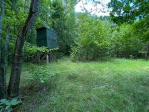 225 acres of Investment and Recreational Land for Sale in Person County!