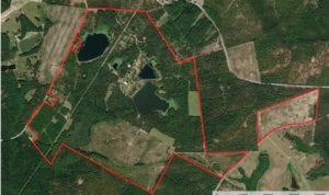 550 acres of Recreational and Timberland for Sale in Kershaw County SC!