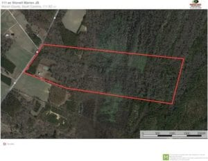 SOLD!! 111 acres of Hunting Land For Sale with Beautiful Home in Marion County, SC!