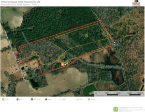 78-Acre Hunting Land For Sale with Extraordinary Home in Florence County, SC!