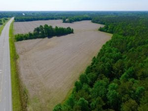 REDUCED! 443.3 Acres of Farm and Timber Land For Sale In Pamlico County NC!