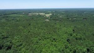 UNDER CONTRACT!!  35.0 Acres of Residential/Recreational Land for Sale in Lee County, NC