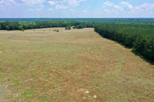 75.26 acre Farm and Home for Sale in Warren County NC!