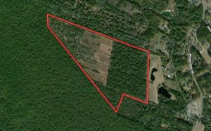 REDUCED!! 72.21 acres of hunting land forsale in Craven County, NC