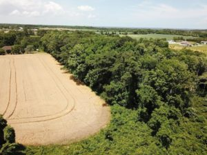 7.81 acres of commercial or residential Land For Sale in Currituck County, NC