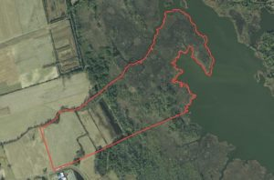 123.8 acres of agricultural or commercial Land For Sale in Currituck County, NC