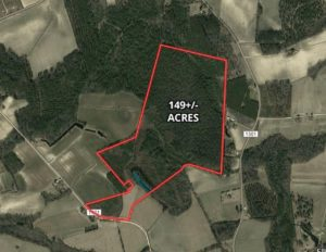 149 Acres of Farm and Timber Land for Sale in Columbus County NC!