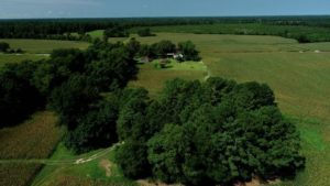 10 Acres of Residential Land For Sale in Robeson County NC!