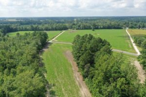 REDUCED!! 28.8 acres of Residential and Farm Land for Sale in Robeson County NC!
