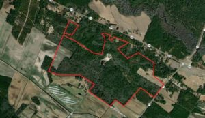 330.22 acres of Residential, Hunting, and Timberland for Sale in Bladen County NC!