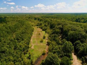 +/-115 Acres of Riverfront Hunting and Timberland with a Small Cabin For Sale in Nash County, NC!
