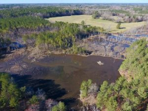 271.86 Acres of Farmland, Pasture Land, and Timberland with Two Ponds For Sale in Halifax County, NC!
