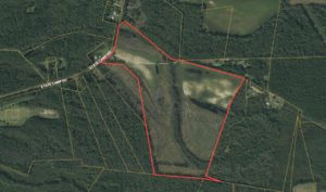 89.6 acres of Farm and Cut Over Woodland under Natural Regeneration with Small Pond!