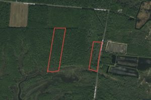 21 Acres of Recreational and Hunting Land For Sale in Pamlico County, NC!