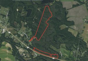 79.9 Acres of Recreational and Hunting Land On Tranter's Creek For Sale in Pitt County, NC!